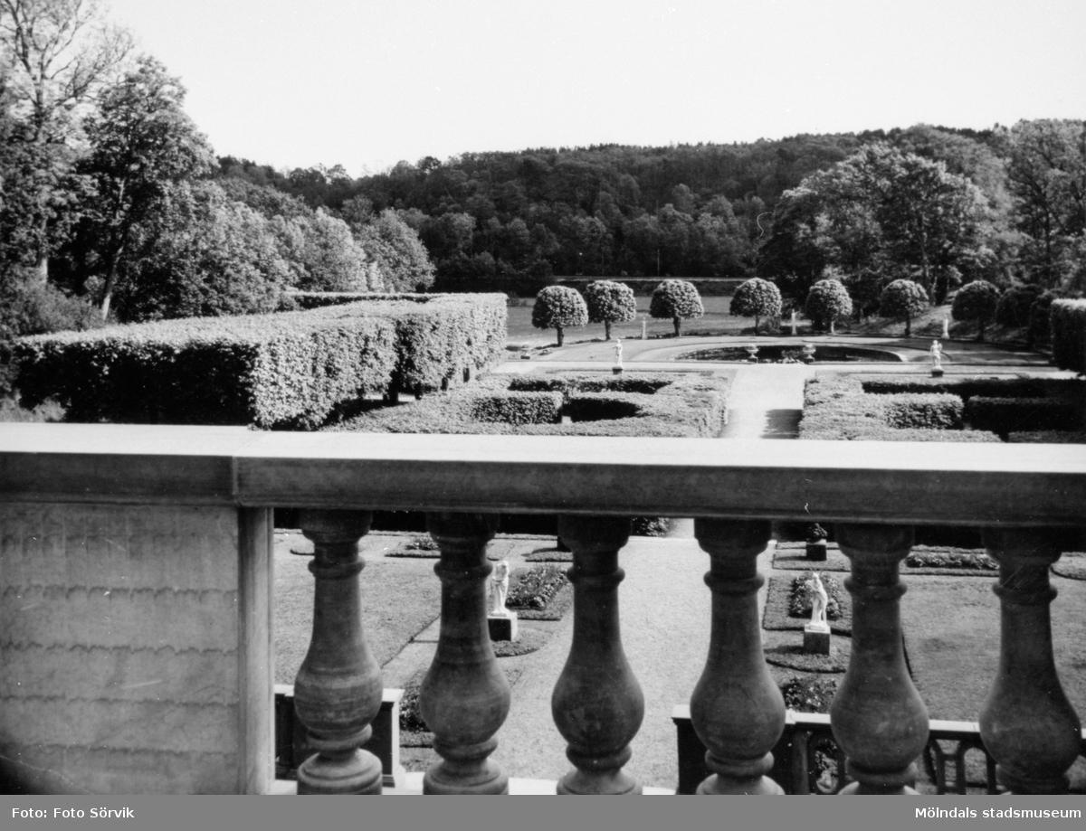 Utsikt mot Gunnebo slottspark, fotograferat från terrassen 1956.
