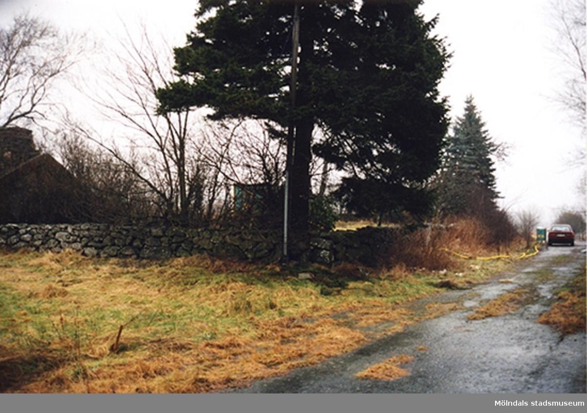 Stenlagda murar vid den plats där trädgården har legat, januari - februari 1999.