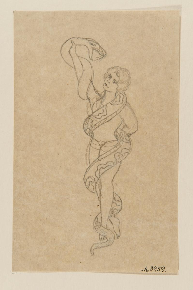 Tatueringsförlaga. En kvinna omslingrad av en orm.