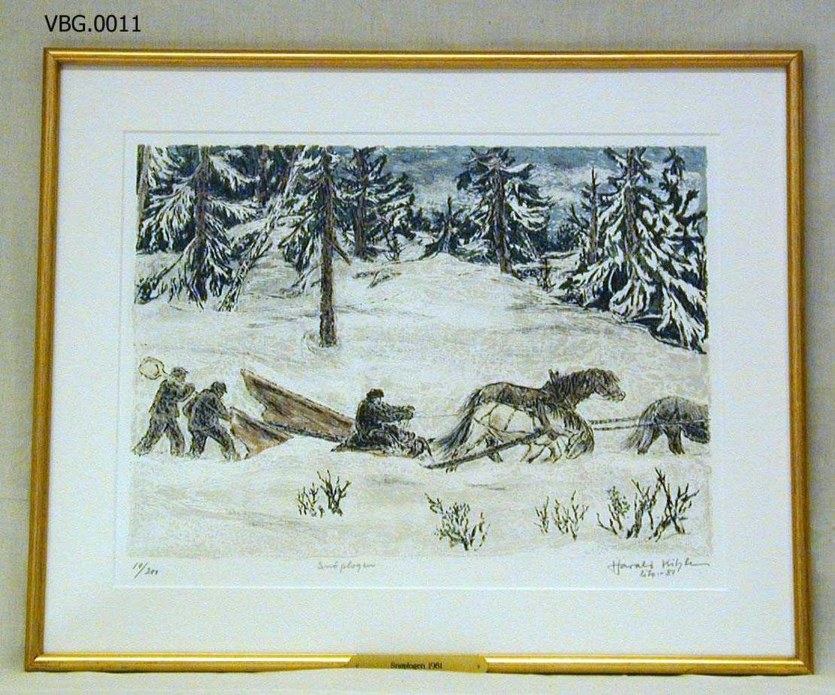 Tre hestar dreg ein snøplog. Ein mann køyrer, to går bak.