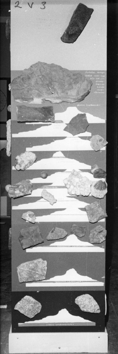 'Foton av pelarna med kronologier i Göteborgs Naturhistoriska museums basutställning ''Vår jord''. :: Pelare nr. 1, 2, 3, 4. ::  :: Pelare 2V3'