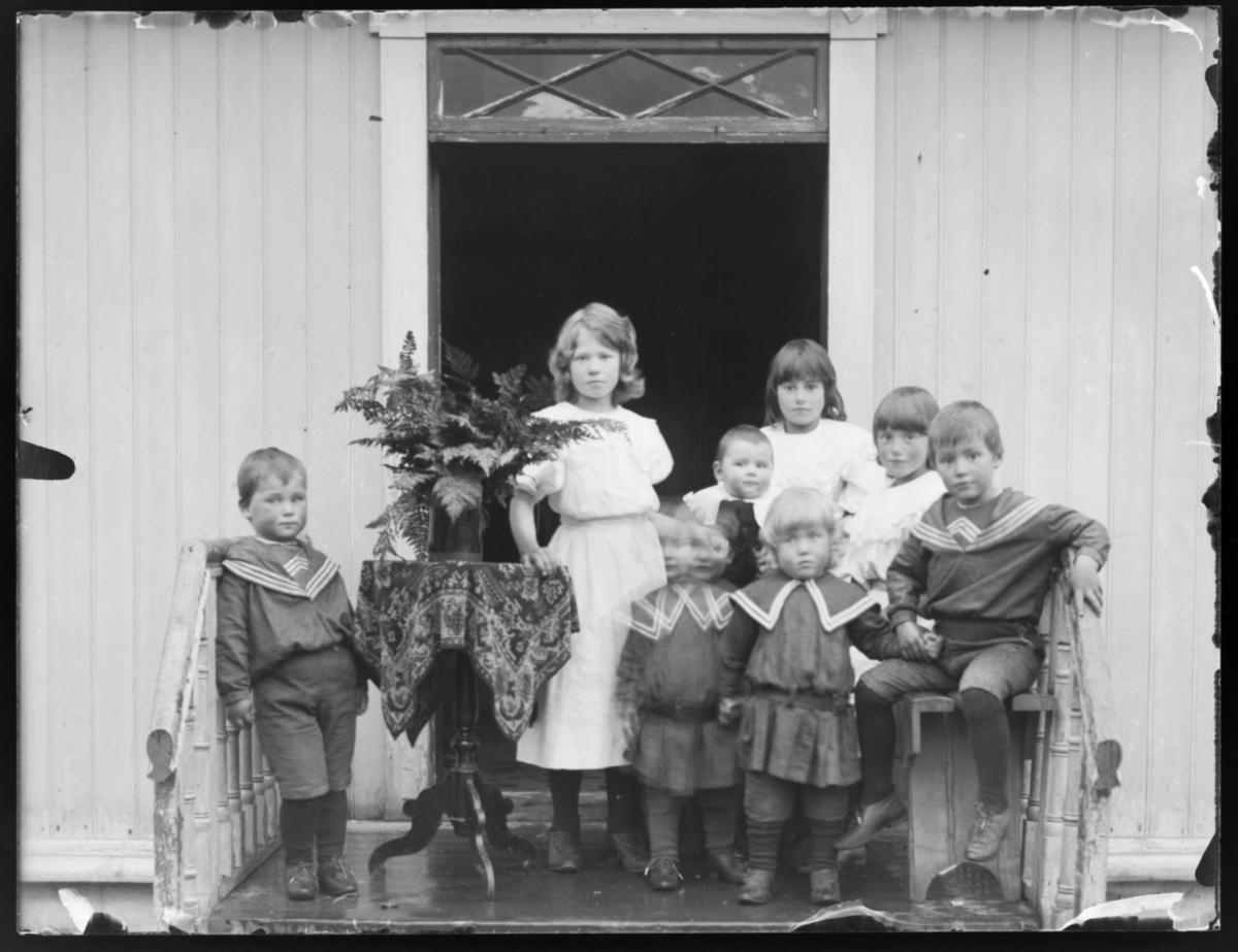 Sogneprest Berglands barn