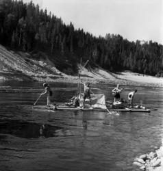 Fyra unga scouter bygger en flotte och ger sig ut på forsfär