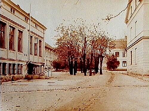Örebro Försörjningsanstalt, tvåvånings sjukhusbyggnader.