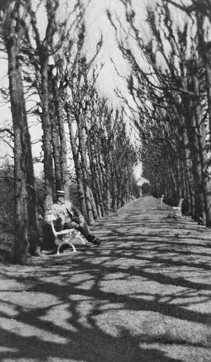 Lindehallen på Linderud gård om våren. Trærne uten bladverk kaster lange skygger på veien. På hver side av veien, med gjevne mellomrom, står det hagebenker. På den nærmeste benken sitter Christian Pierre Mathiesen og ser mot fotografen.