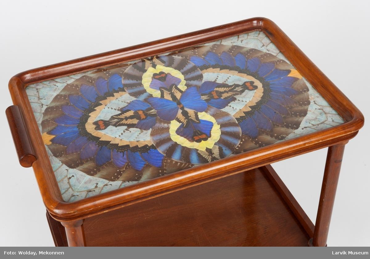 Motiv laget av sommerfuglviner, bl.a. fra Blue Morph