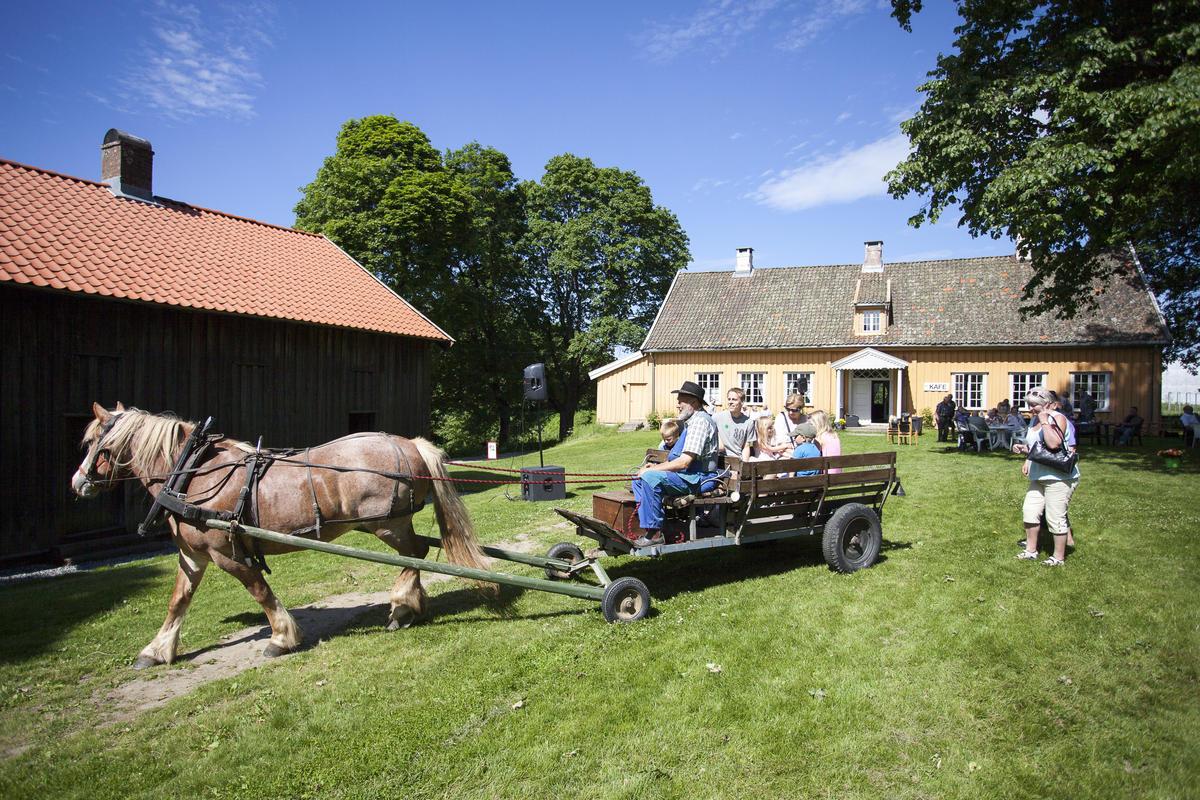 Hest og vogn på Skedsmo bygdemuseum (Foto/Photo)