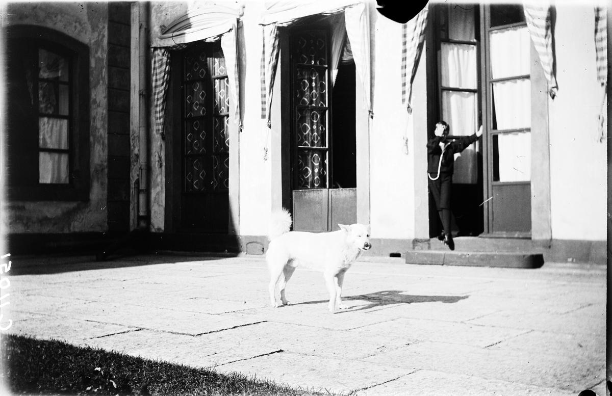 Drottning Victorias bilder. En av prinsarna (Erik ?) med hund. Tullgarns slott.