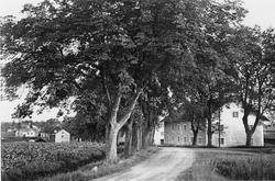 Brefvens Bruk, Närke. Bruksgatan från söder.