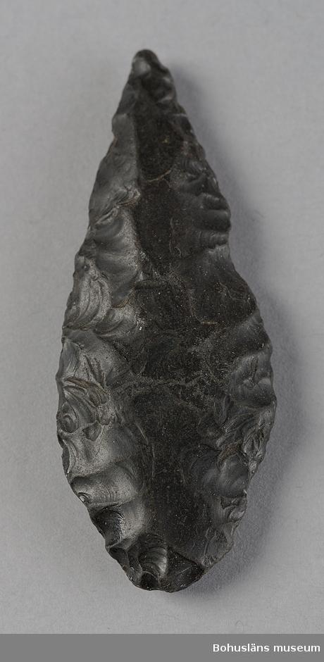 Ur handskrivna katalogen 1957-1958: Pilspets Pilspets av obsidian 62 x 24 x 9 mm. Kalifornien