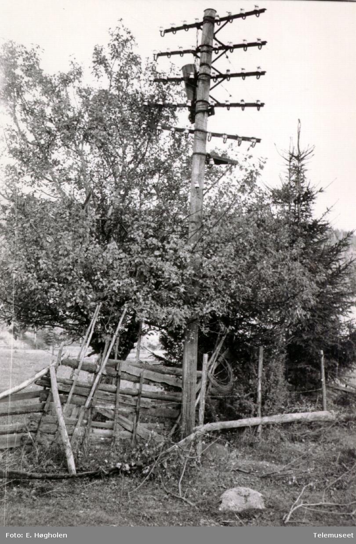 Telefonstolpe med 5 traverser på kursen Stange - Tangen ved Måsåbakken.