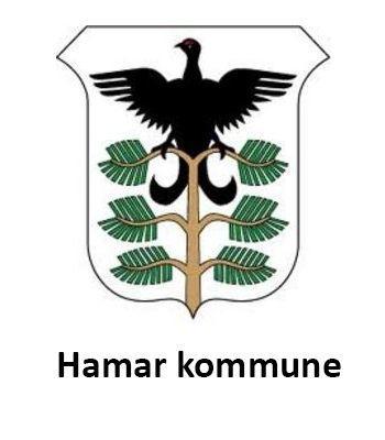 Hamar-kommune.jpg