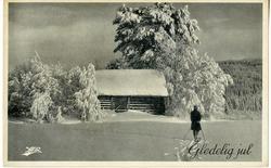 Julekort. Ubrukt. Fotografi. Vinterlandskap. En skiløper på