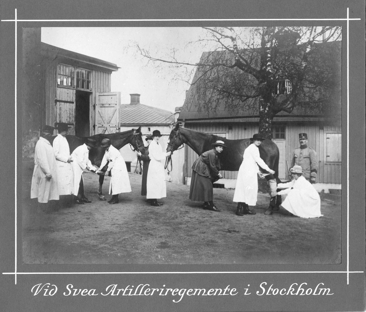 Svea artilleriregemente A1 i Stockholm, två hästar besiktigas på gårdsplan.