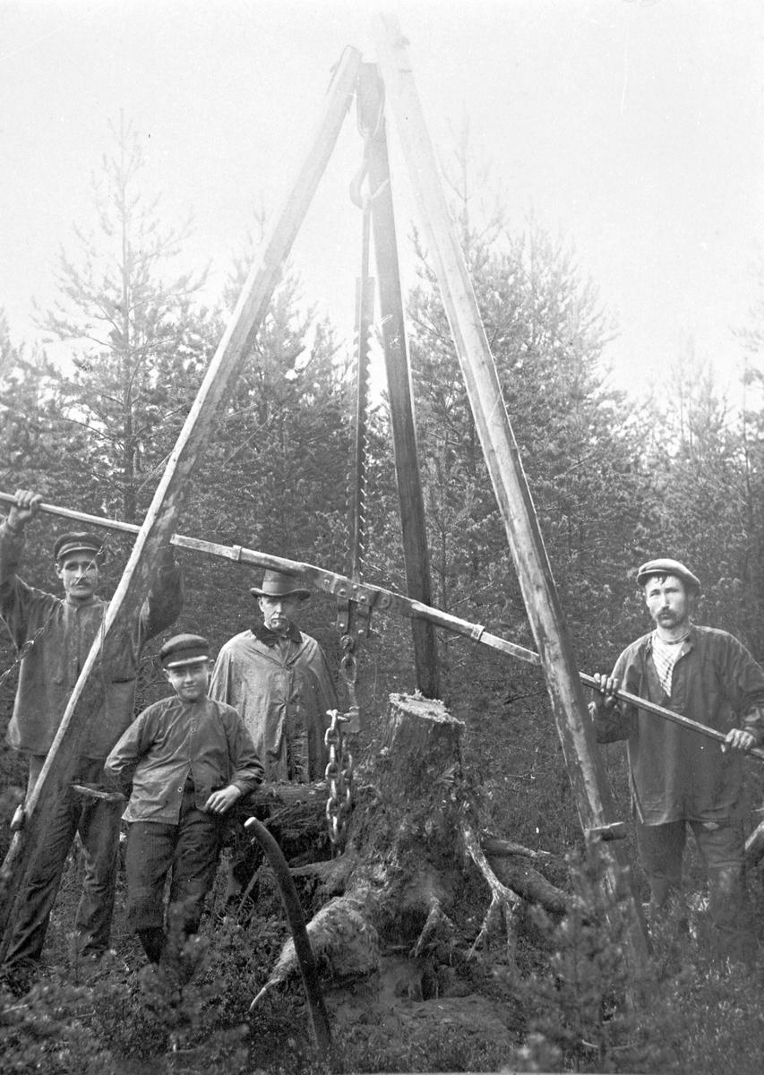 Stubbrytning. Tillsammans med Gunnar Lindqvist och Per Åberg startade Jöns Wilander en tjärfabrik i Hagsta, Hamrånge. Jöns Wilander är mannen i hatt.