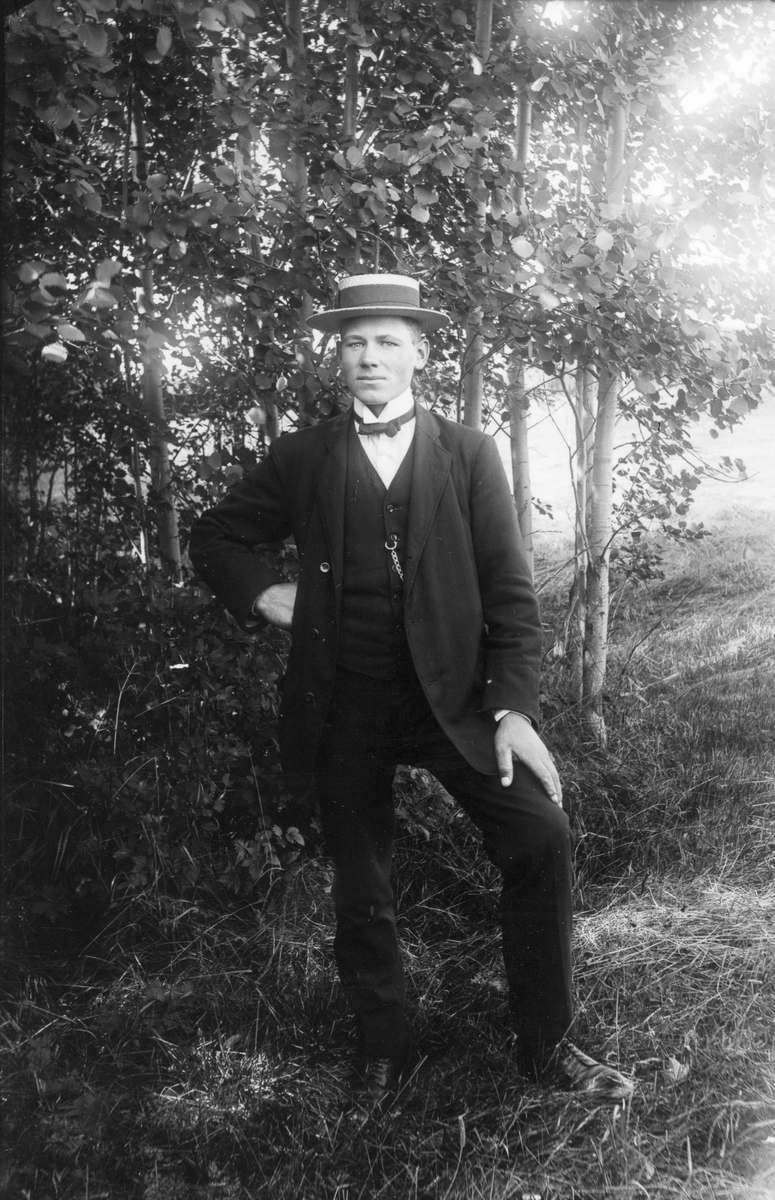 Kattnäs-Helmer (Olsson).