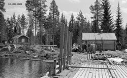 «8.5.1954. Gåsvassdammen.»