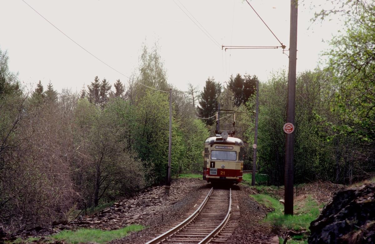 Trondheim trafikkselskap. Gråkallbanen. Vogn 21 i linje 1 på vei mot Voldsminde.
