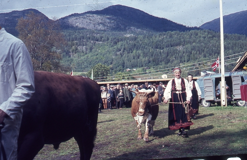 Borghild Glosimot med Telemarksku.