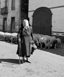 Äldre kvinna på bygata i trakten av Roquefort, Frankrike. Få