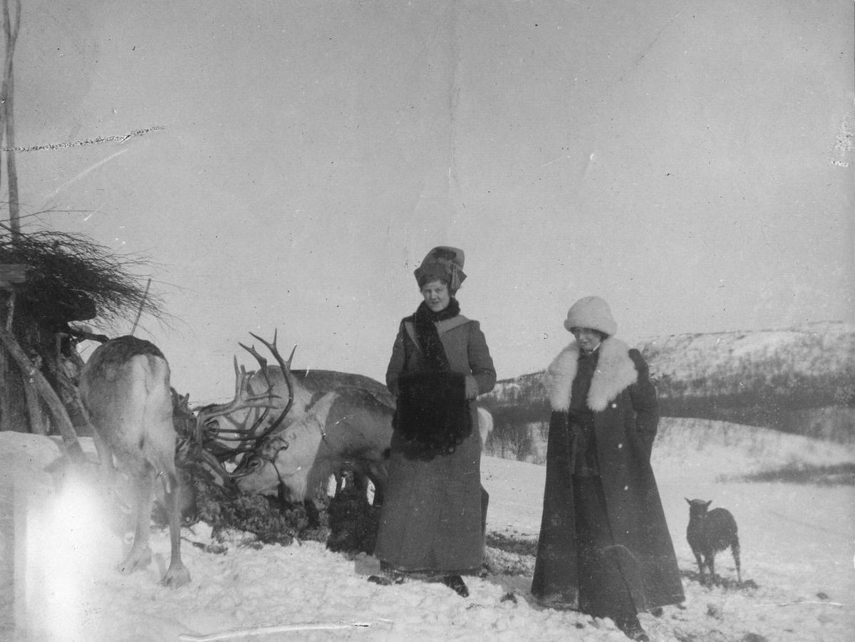 To kvinner i vinterbekledning oppstilt ved siden av flere reinsdyr. Kvinnen til venstre i bildet er