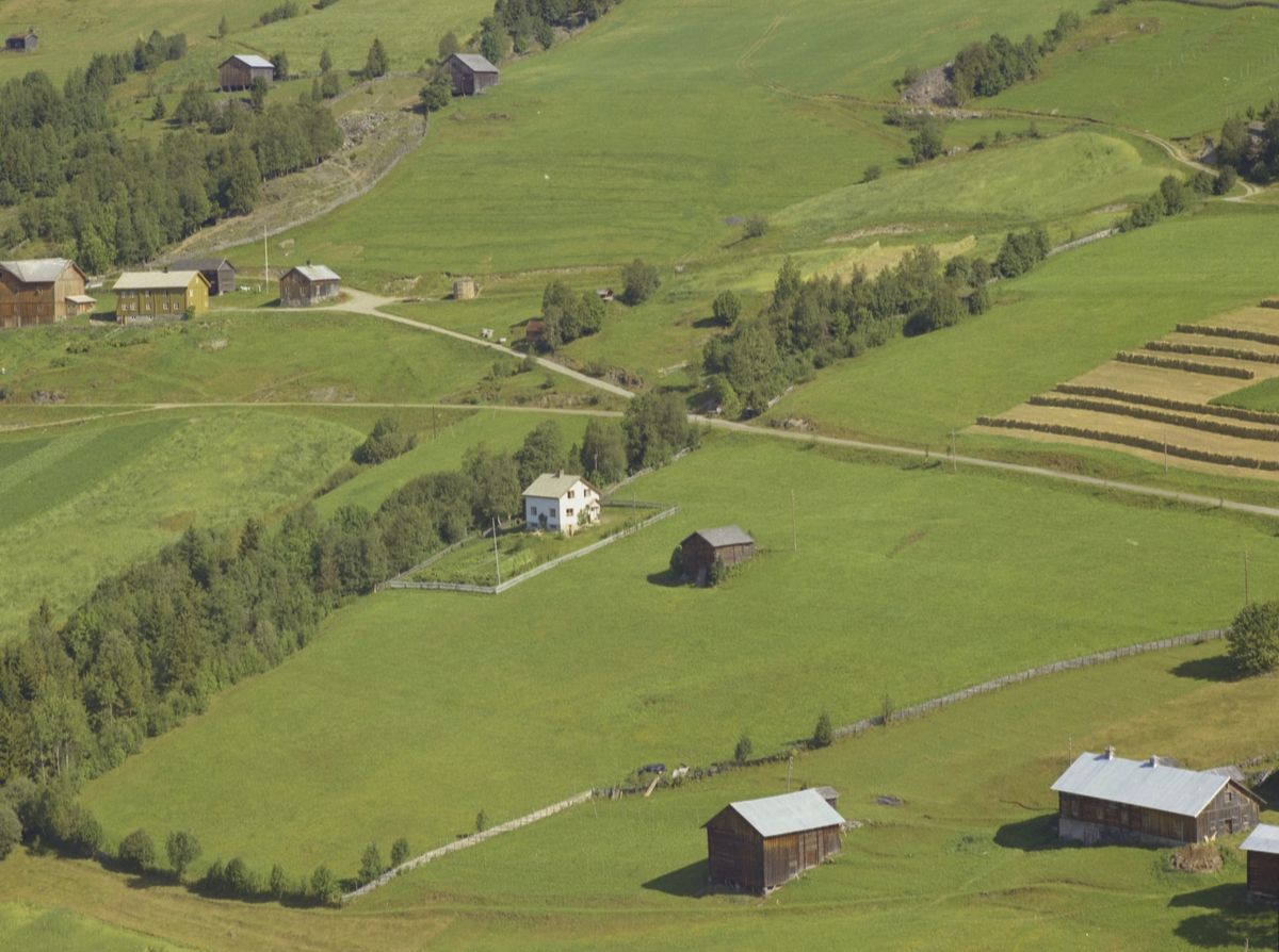 Kulturlandskap, hesjer, bolighus, gårdsbruket Brettingen bak til venstre, Bødalen Vestre Gausdal