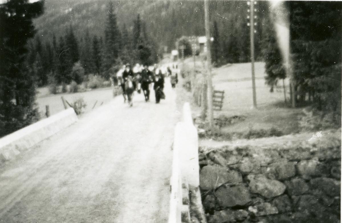 Brudefølge på stemnet ved Bagn Bygdesamling i 1946.