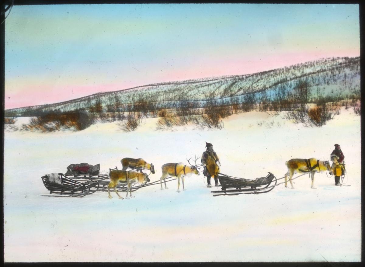 """""""507b) Reisende samer"""" står det på glassplaten. En samisk mann med Kautokeino-lue (?) og pesk står og holder tre kjørerein med flere sleder bak. En kvinne i pesk og samisk lue står litt lenger til høyre og holder en kjørerein med slede i et tau. Det er vinter og landskapet er dekket av snø. I bakgrunnen sees et høydedrag dekket med småskog. Bildet er håndkolorert for å gjenskape vinterhimmel i rosa, gult og blått. Det kan se ut til at følget er fotografert på en frosset elv eller innsjø."""