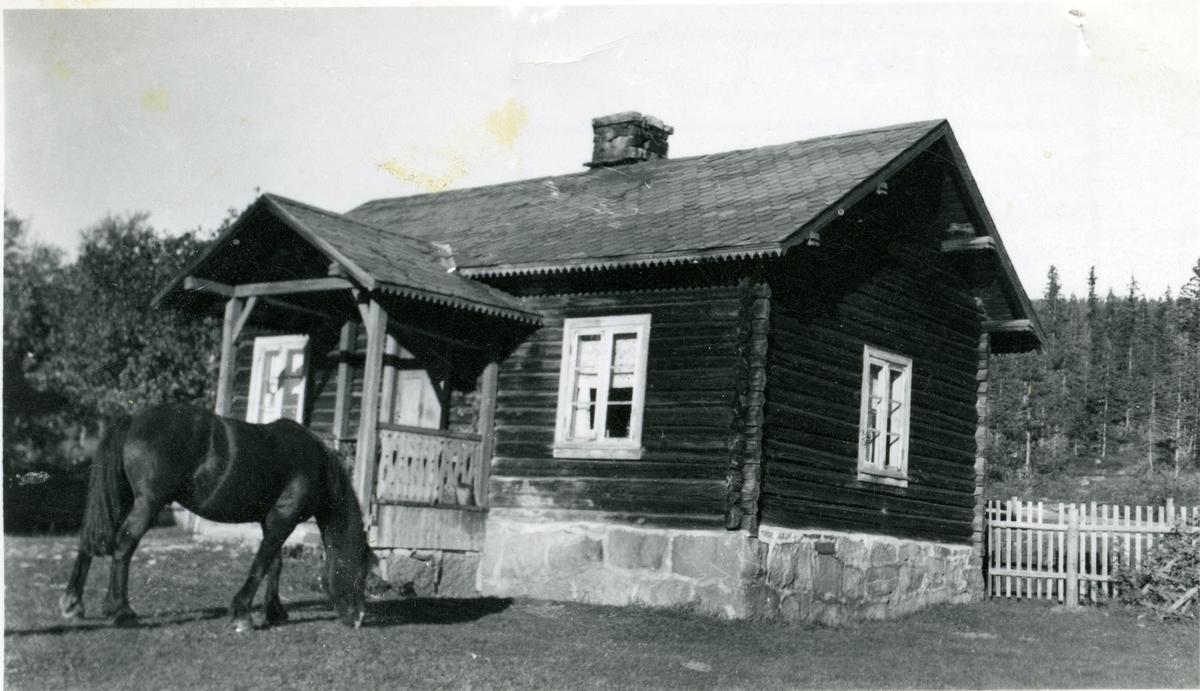 Hesten står utenfor gamlestua, Braka i Hedalen, Sør-Aurdal.