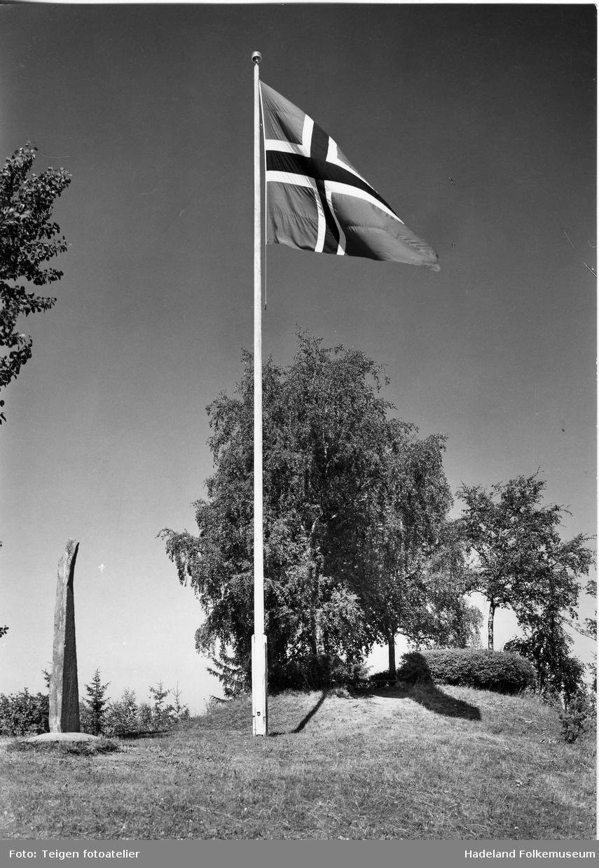 Det norske flagg i flaggstang ved Halvdanshaugen og Dynnasteinen