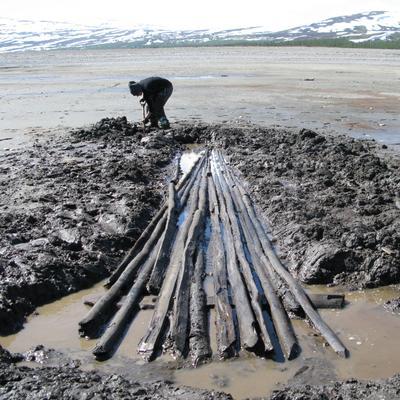 Utgraving av hel sløe fra Tesse, datert til 12-/1300-tallet. (Foto/Photo)