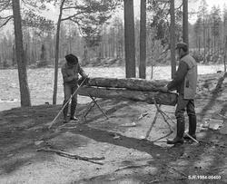Oppsetting nying ved Stenbekkoia ved Femundselva i Engerdal