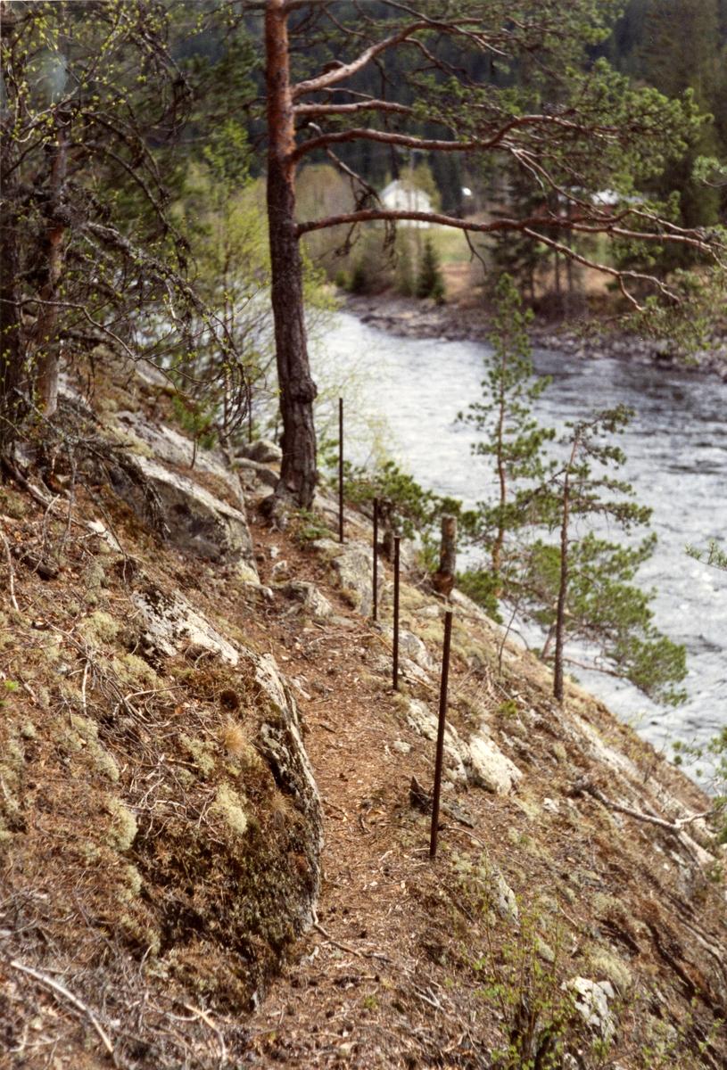 Sti i berget og langs elva Begna. Stien går til Leiteberget.