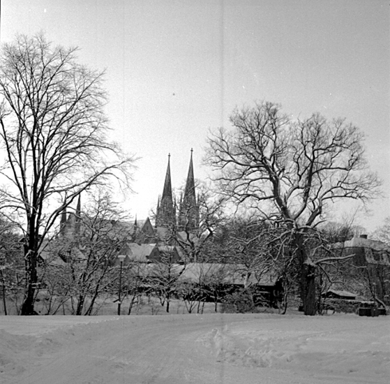 Skara. Domkyrkan från Stadsträdgården.