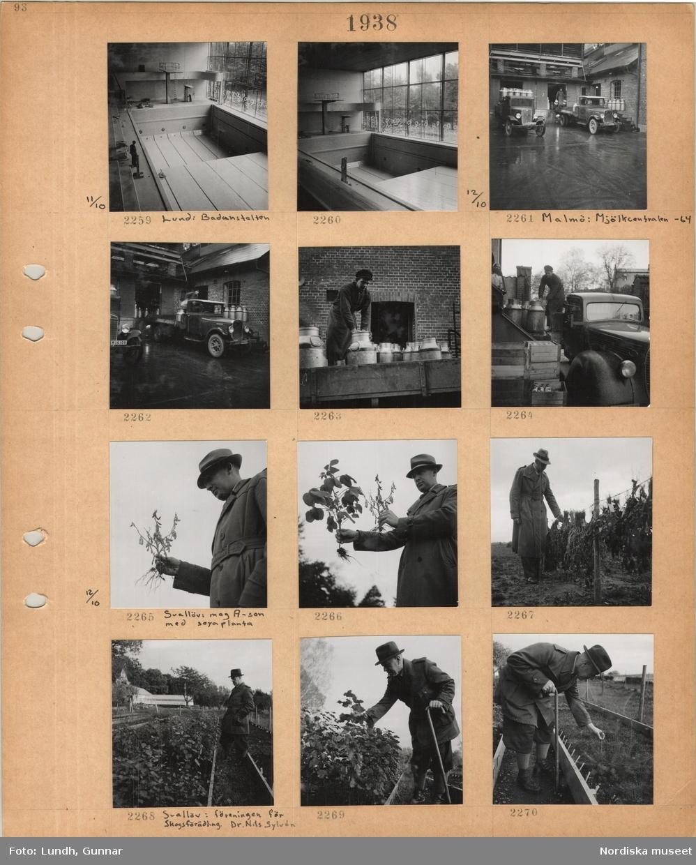 Motiv: Interiör av simhall med hopptorn och tom simbassäng, Lund, badanstalten, två lastbilar vid lastbrygga, en man lastar stora mjölkkärl, Malmö mjölkcentral, regn, man i arbetskläder vid stora mjölkkärl, trälådor med mjölkflaskor, Svalöv, en man, mag. A-son, i ytterrock och hatt håller i en växt med fröbaljor, sojaplanta, man håller i en växt med blad och en med fröbaljor, man i ytterrock och hatt inspekterar växter som hänger på tork utomhus, Svalöv, föreningen för skogsförädling, en man, dr Nils Sylvén, i lång jacka och hatt, med käpp, inspekterar växter i odlingsbänk.