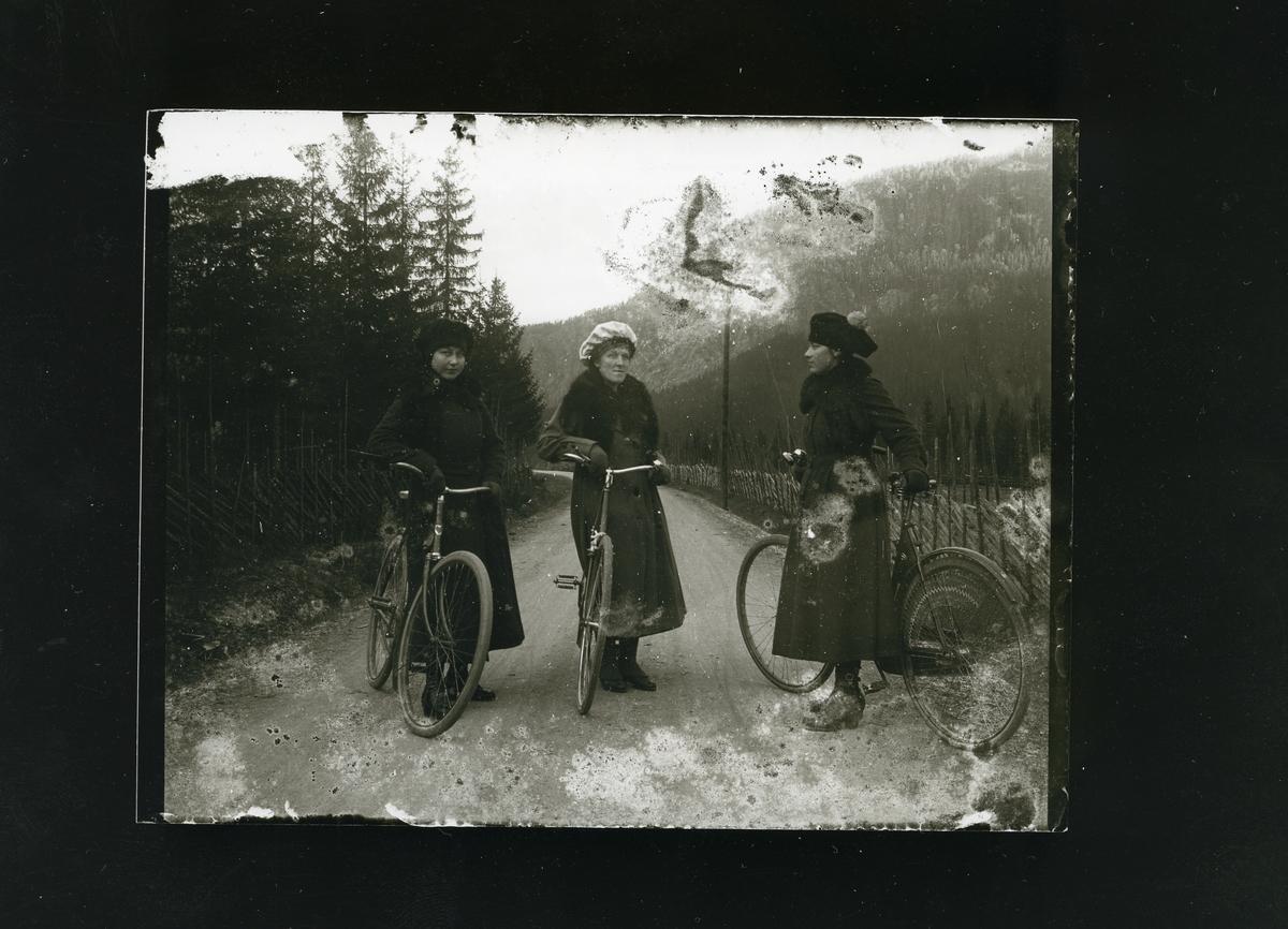 3 kvinner, i lange kåper står ved hver sin sykkel på veien ved Øylo i Vang.