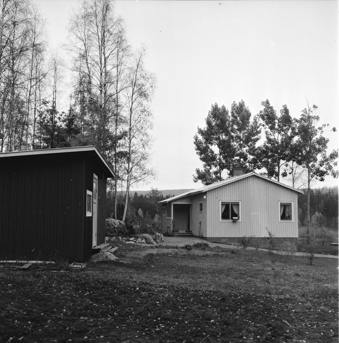 Larsson Alvi, Polsk fru i Växbo, 16 Okt 1963