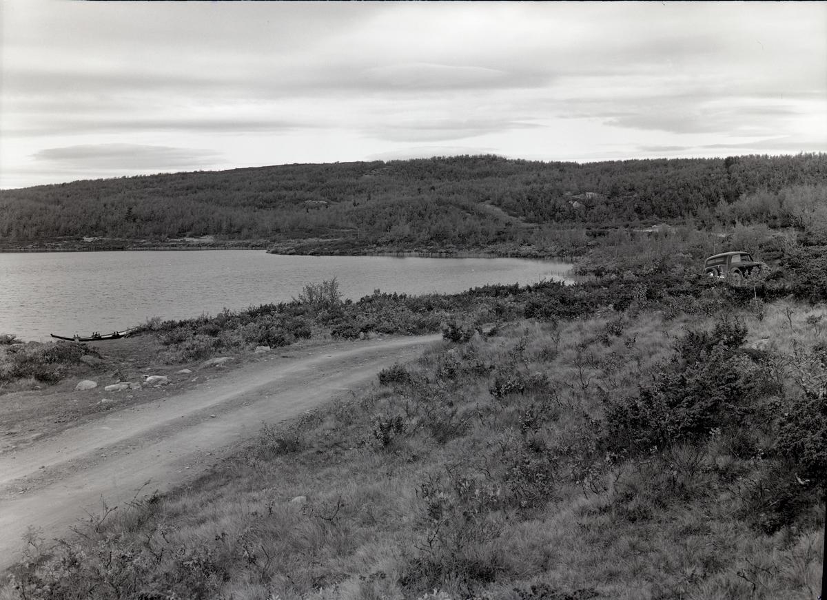 Langs med veg ved Hafsenn. Vestre Gausdal - Etnedal.