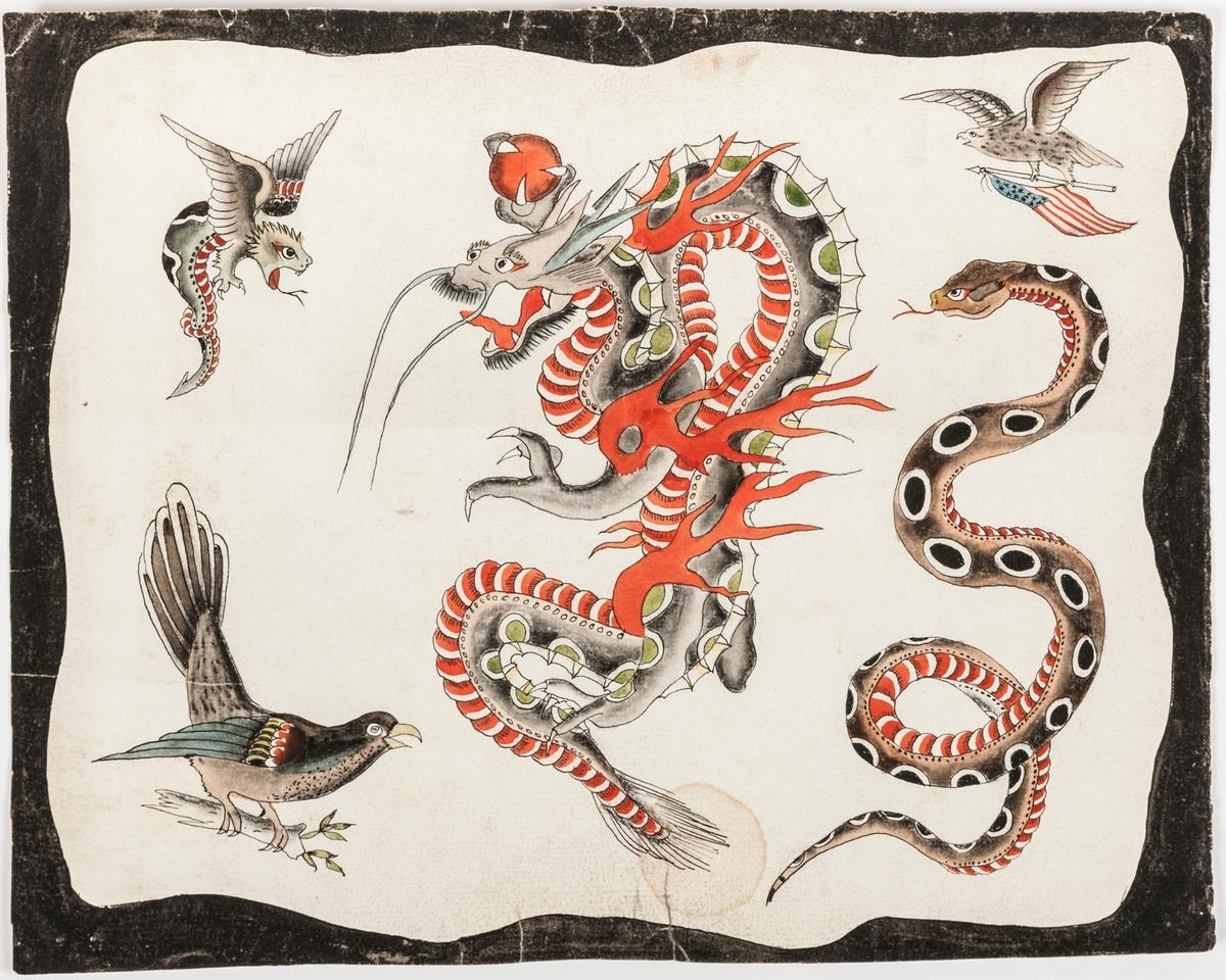 Tatueringsmönster med bild av drake, fåglar och orm.