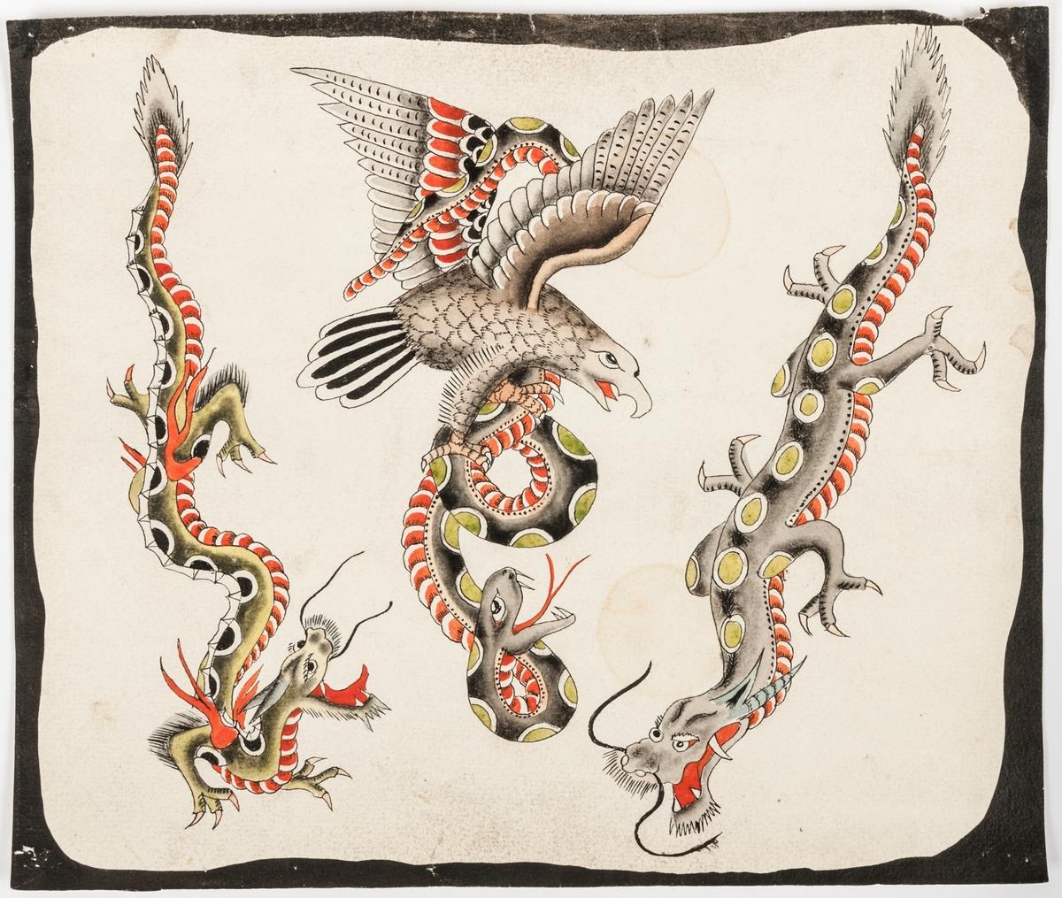 Tatueringsförlaga med mönster av ödlor, örn.  Storlek, med svart bård, 22x26 cm.