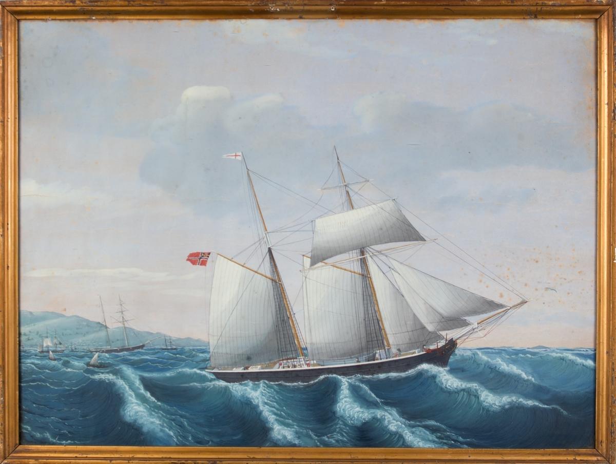 Skipsportrett av skonnert NORNEN (antatt) i opprørt hav. Flere mindre fartøyer i horisonten. Land til venstre i motivet.