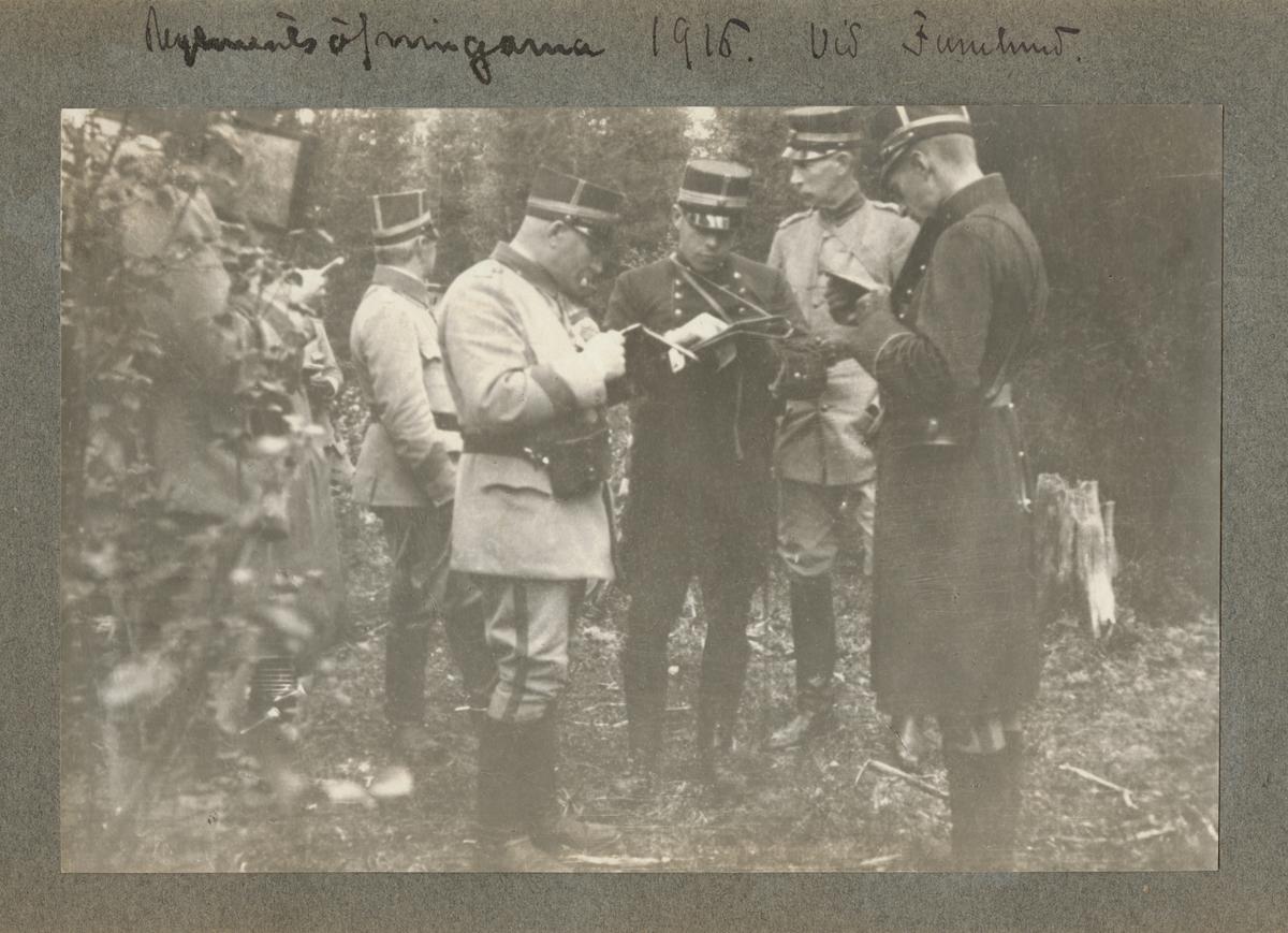 En grupp officerare läser karta i skogen.