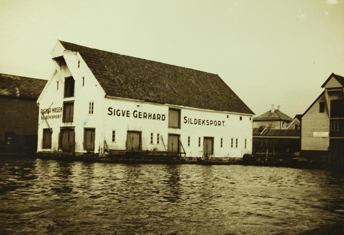 Risøen - Risøy sett mot øst 1938