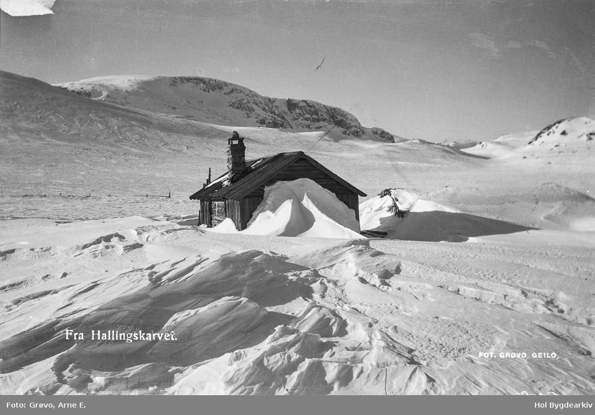 Landskap, Vestreim, Budalen, vinter, Hallingskarvet, Postkort