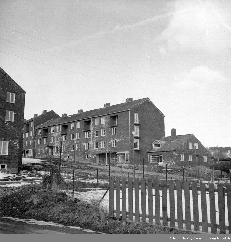Sogn, Studentbyen under bygging. April 1952