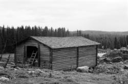 Vestre Fløten, Philske sameie, seterbruk på Hedmarken,