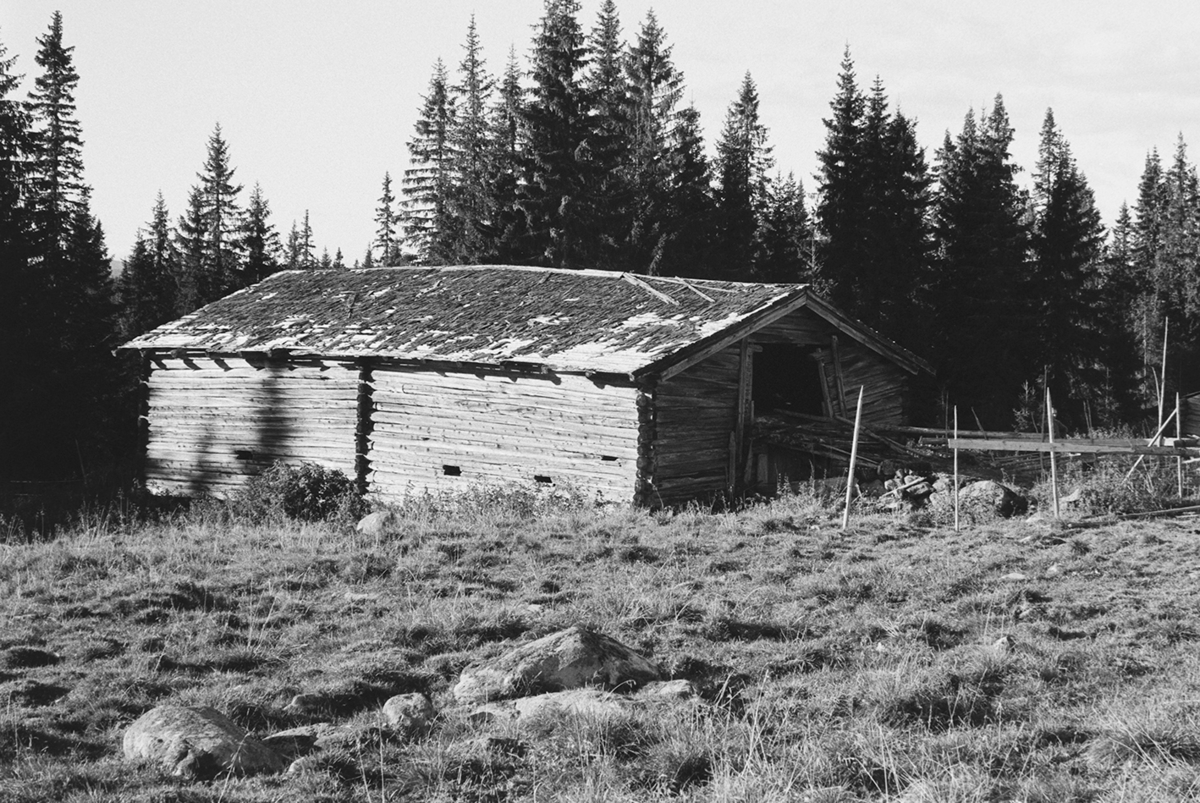 Døråsen, Gålås, Philske sameie, fjøslåve, seterbruk på Hedmarken,