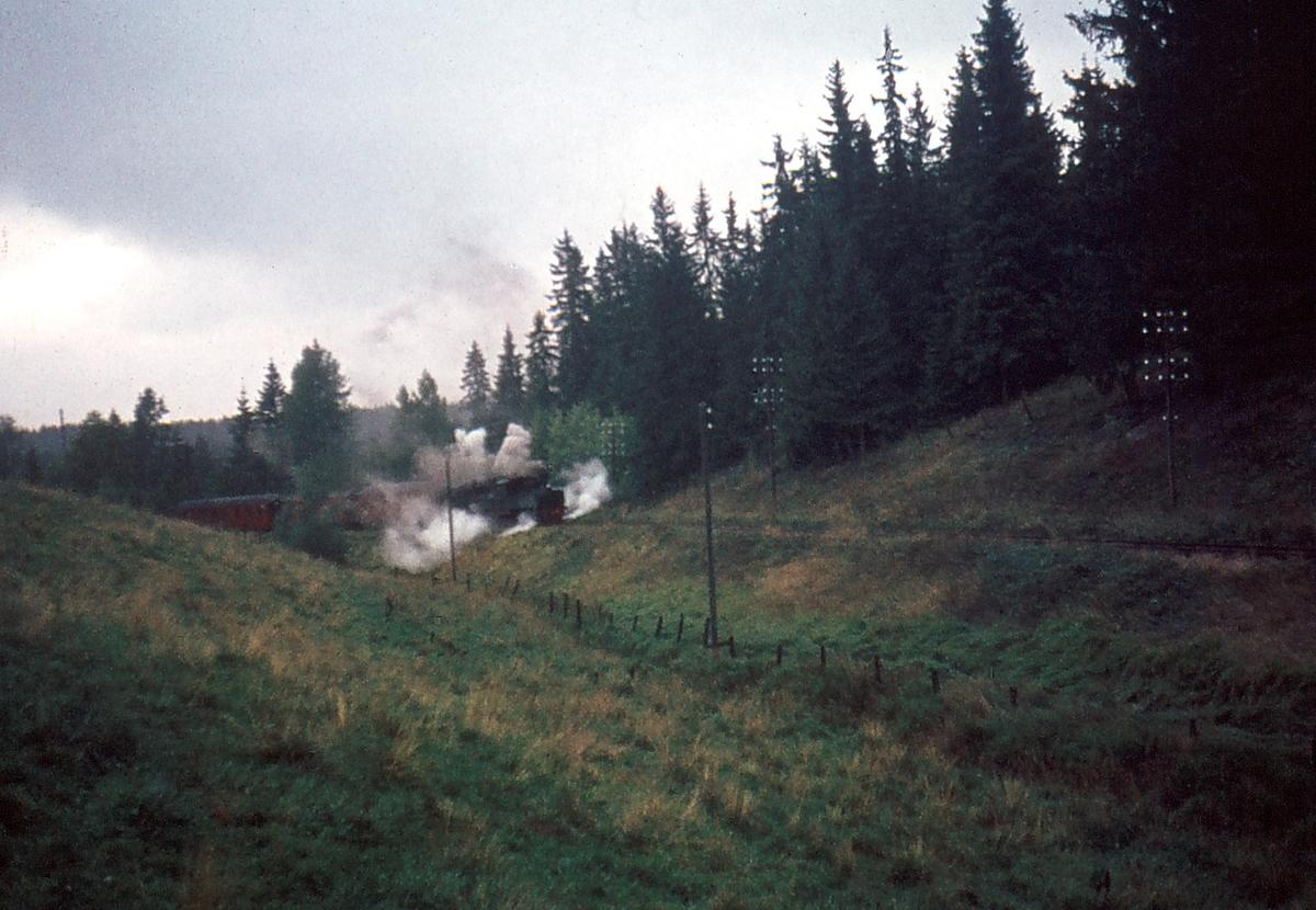 Damptog på museumsbanen Urskog-Hølandsbanen, Tertitten.