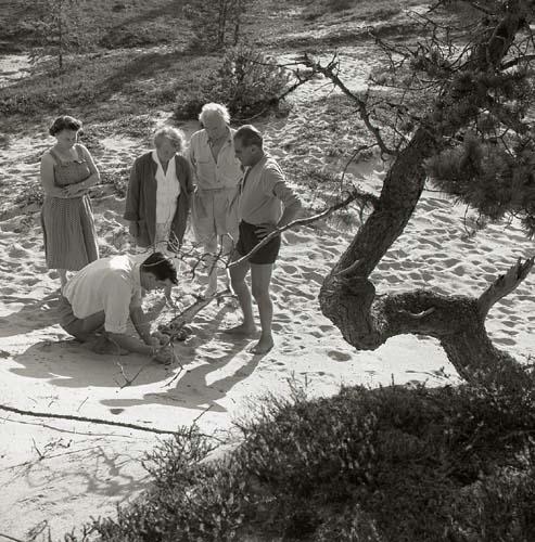 Fyra personer tittar på en nedhukad person som visar något i sanden, Köpmanholmen 1959.