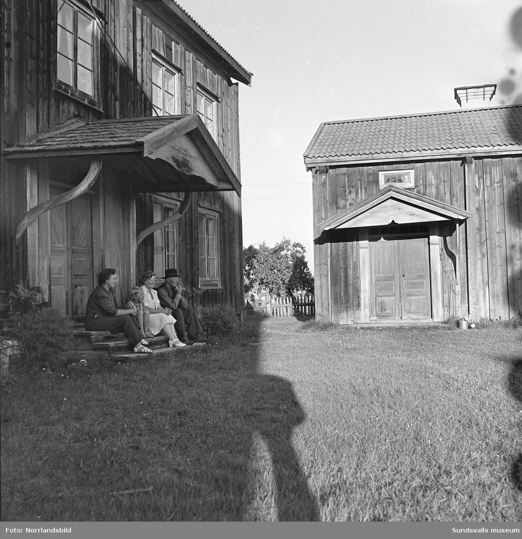 En av de gamla släktgårdarna i Harv som senare (1963) blev lågornas rov då nästan hela Harvs by brann. Petter Nilsson (bild 5 och 6) sköter om gården.